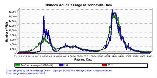 96 spring chinook catches increase in lower columbia but for Bonneville dam fish count