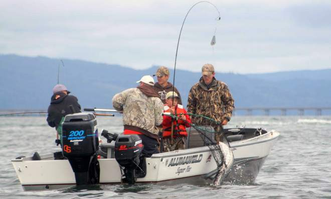 96 columbia river fishing report june 2015 allen thomas for Free fishing weekend oregon