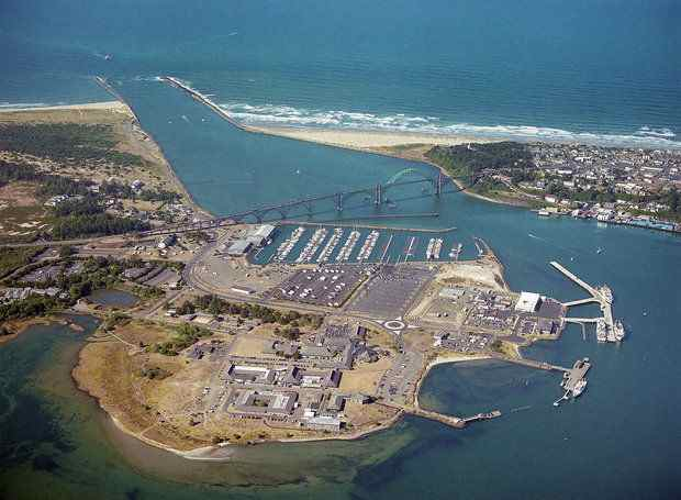 The Newport Bay is a commercial fishing hub. The Port of Newport wants to bring more ship activity through an international terminal shipping facility. (Oregon State University photo)