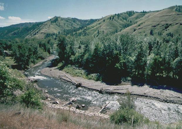 The Tucannon River, flowing out of the Blue Mountains near Dayton, Wash., supports a range of fisheries at adjacent lakes. (Associated Press photo)