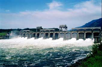 Columbia River Fish Counts on Ap Photo Columbia River Waters Flow Through Spillway Of The