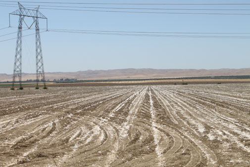 Electric lines cross unused agricultural land. (Solar Home & Business Journal photo)