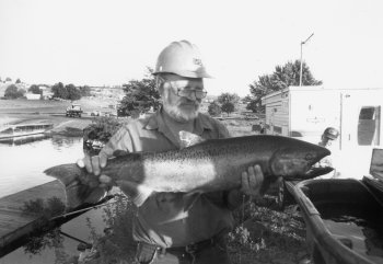 96 upriver run gets late boost snake fish may set record for Bonneville fish counts