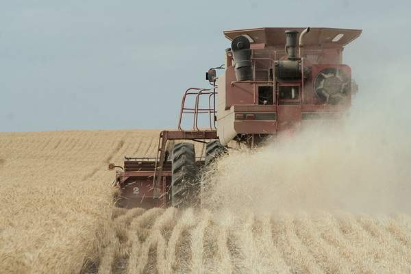 A high-level U.S. Wheat Associates officials says the industry must keep up its pressure on the Trump administration to re-enter the Trans-Pacific Partnership trade agreement. Nearly 90 percent of the wheat grown in the Northwest is exported to Pacific Rim customers.
